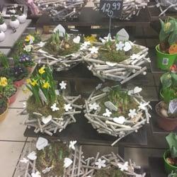 blume 2000 florists berger str 128 nordend ost frankfurt hessen germany phone number. Black Bedroom Furniture Sets. Home Design Ideas