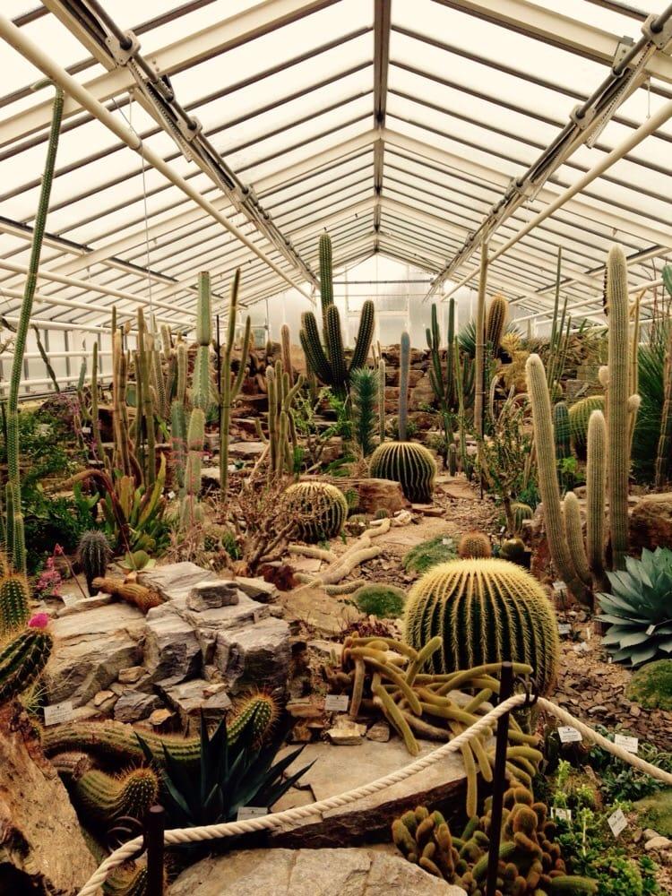 Botanischer Garten Gewächshäuser Yelp