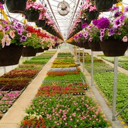 Photo Of Sargent S Landscape Nursery Rochester Mn