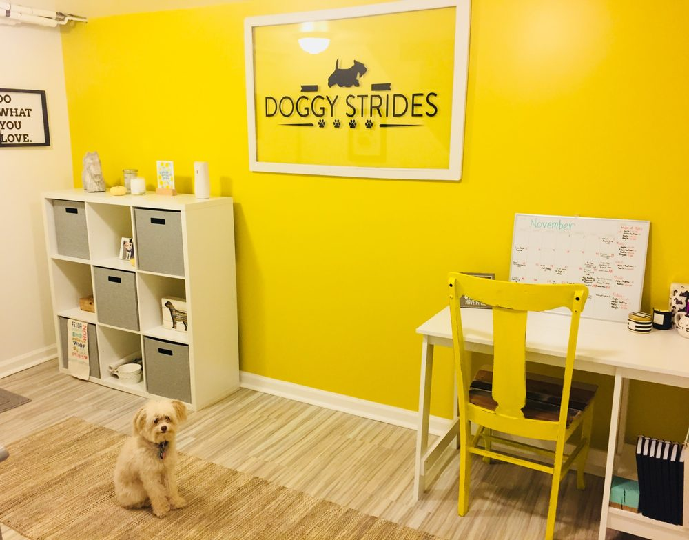 Doggy Strides Pet Sitting & Dog Walking