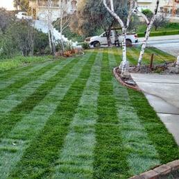 Photo Of Medina Landscaping And Gardening Service   San Jose, CA, United  States.