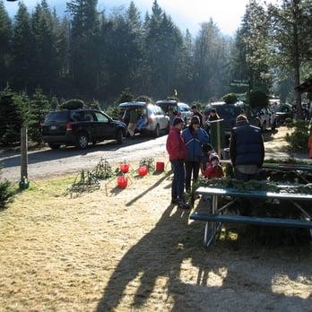 Christmas Creek Tree Farm Home Amp Garden 15515 468th