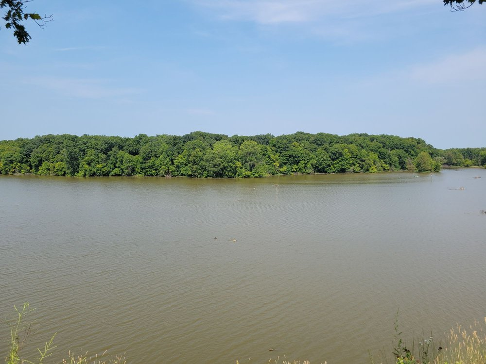 Alum Creek Osprey Overlook: 2656 Hogback Rd, Sunbury, OH