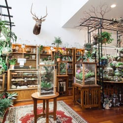 Roosevelt S Terrariums 151 Photos 103 Reviews Nurseries
