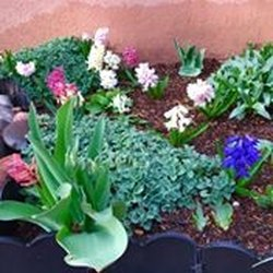 Photo Of Proscape Landscape Management   Santa Fe, NM, United States ...