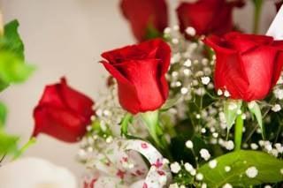 Jefferson Flower Shoppe: 194 Turkeysag Trl, Palmyra, VA