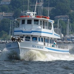 The seahorse boat charters atlantic highlands nj for Atlantic highlands nj fishing