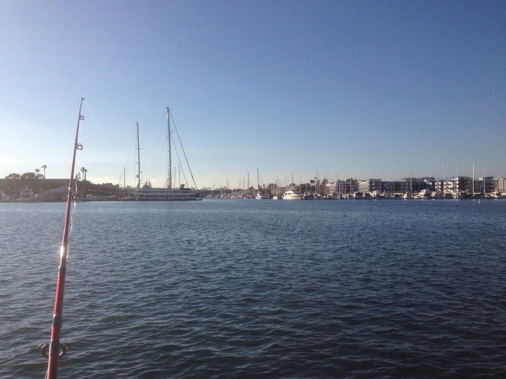 View of ocean yelp for Marina del rey fishing report