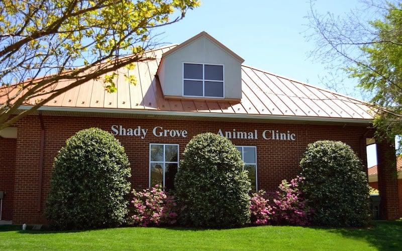 Shady Grove Animal Clinic