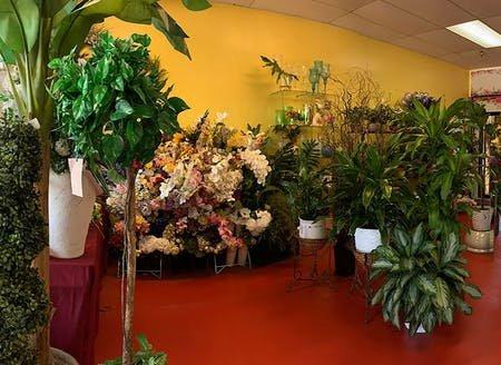 Flower Kingdom: 4406 Northlake Blvd, Palm Beach Gardens, FL