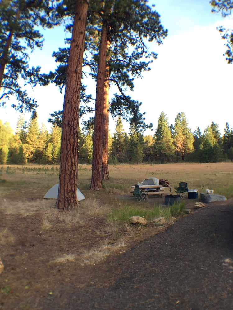 Malheur National Forest: Malheur National Forest, OR, OR