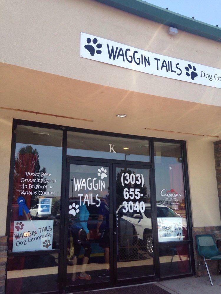 Brighton Shiny Grooming: 965 Platte River Blvd, Brighton, CO