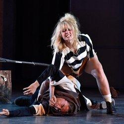 Santa Cruz Shakespeare - 31 Photos - Performing Arts - 501