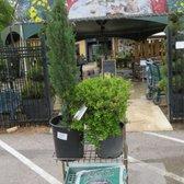 Amazing Photo Of Round Rock Gardens   Round Rock, TX, United States. We Bought