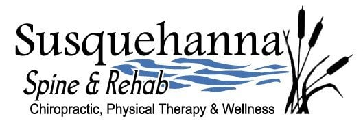 Susquehanna Spine & Rehab: 2105 Laurel Bush Rd, Bel Air, MD