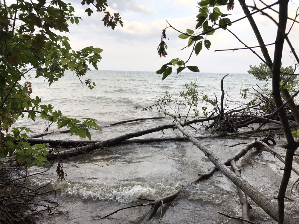 Shorewood Nature Preserve