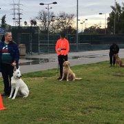 Dog Obedience Training Riverside Ca