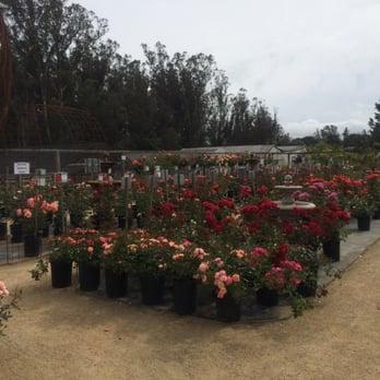 Photo Of Cottage Gardens Petaluma Ca United States
