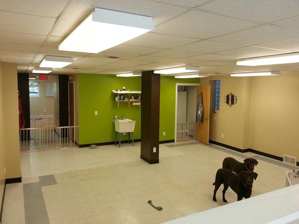 Dog Haus University - Park St.: 502 S Park St, Madison, WI