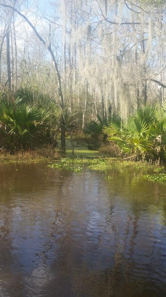 Jean Lafitte Swamp Tours Yelp