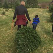 Snickers Gap Christmas Tree Farm - 59 Photos & 16 Reviews - Christmas Trees - 34350 Williams Gap ...