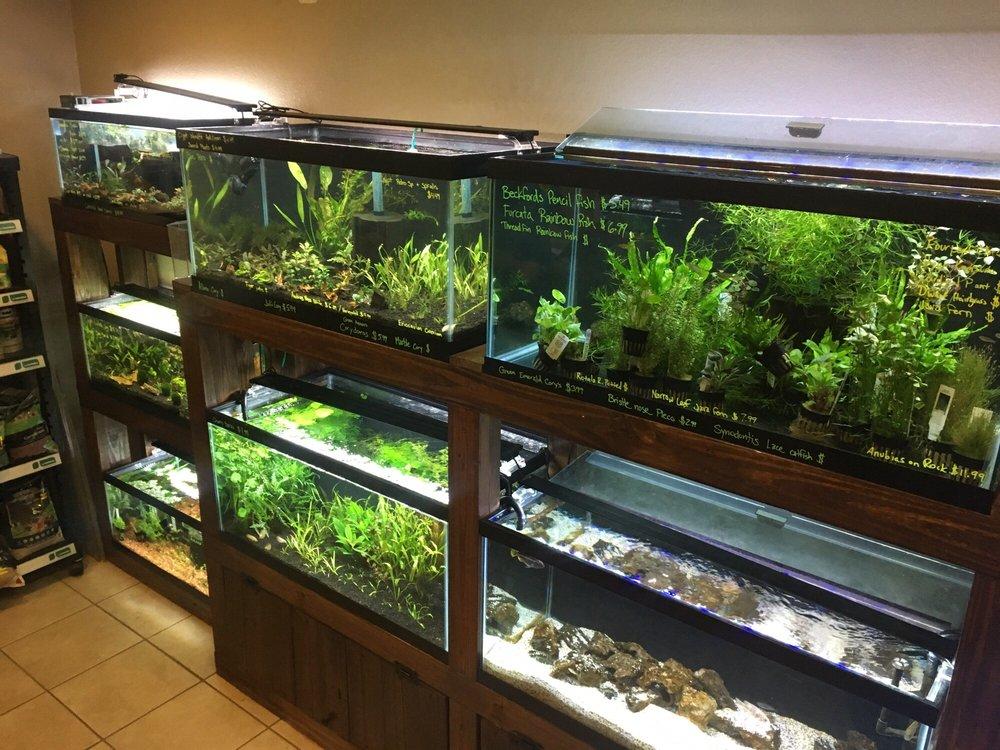 Aquascaping Supply: 5525 Commerce Blvd, Orlando, FL