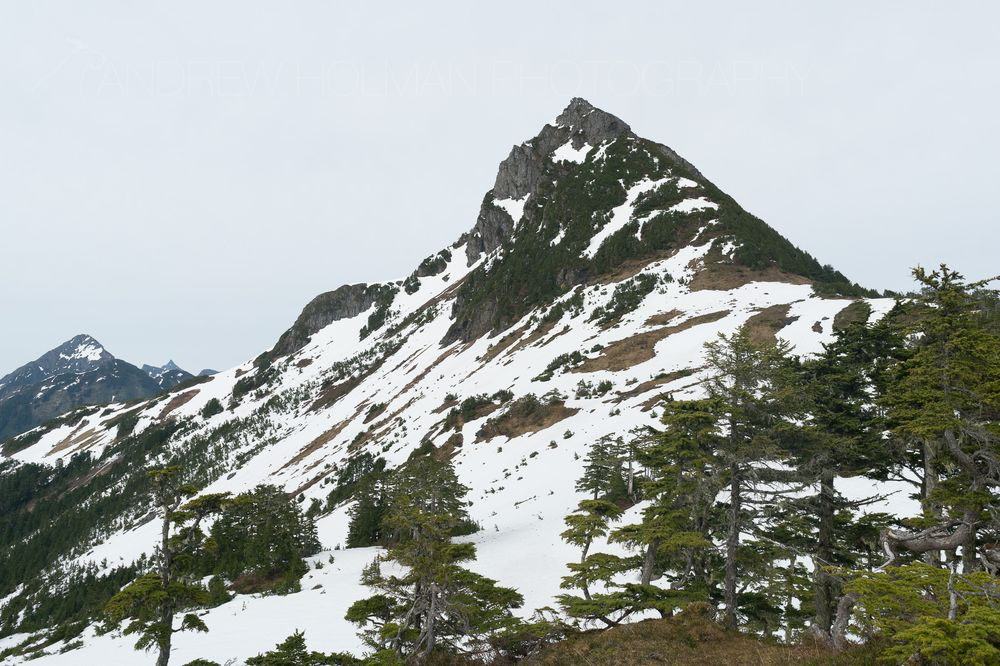 Mt Verstovia Trail: Mt Verstovia Trl, Sitka, AK