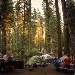 Crane Flat Campground 40 Photos 40 Reviews Campgrounds Big
