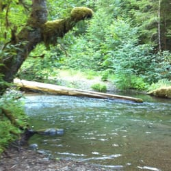 Photo Of Panther Creek Campground
