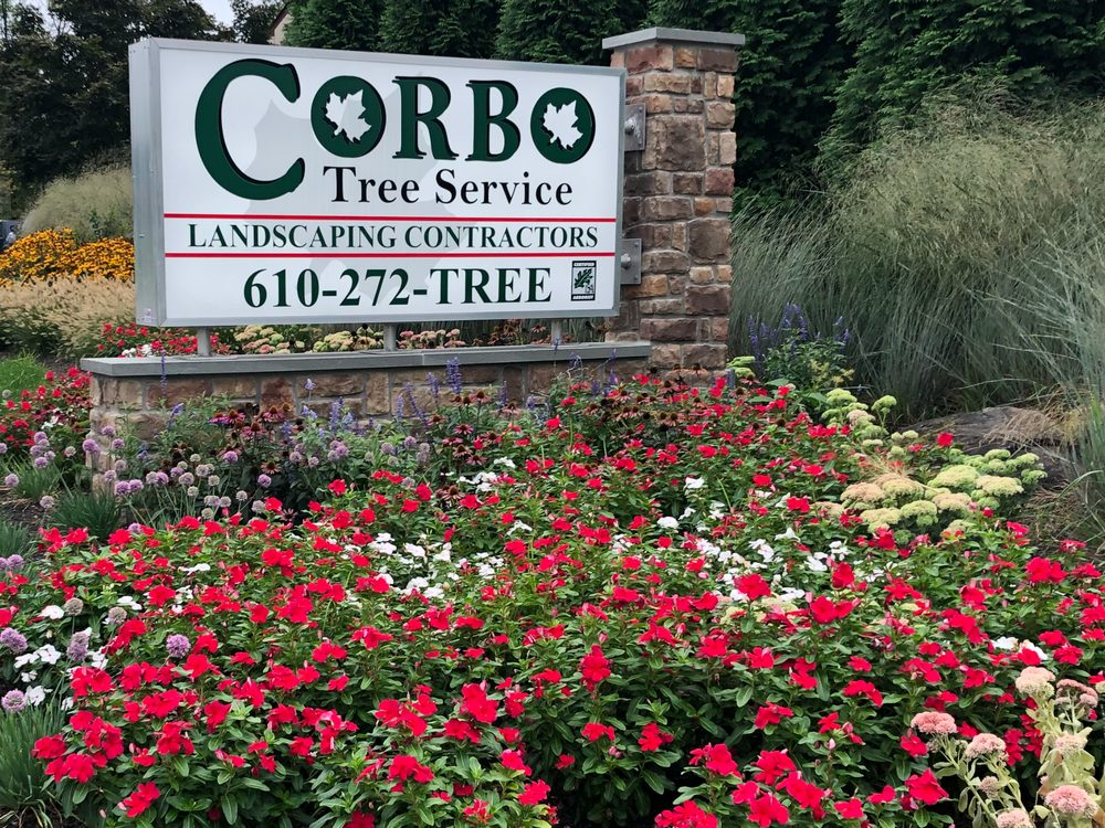 low priced a8dfa 4aa1c Corbo Tree & Landscaping Service - 29 Photos & 10 Reviews ...