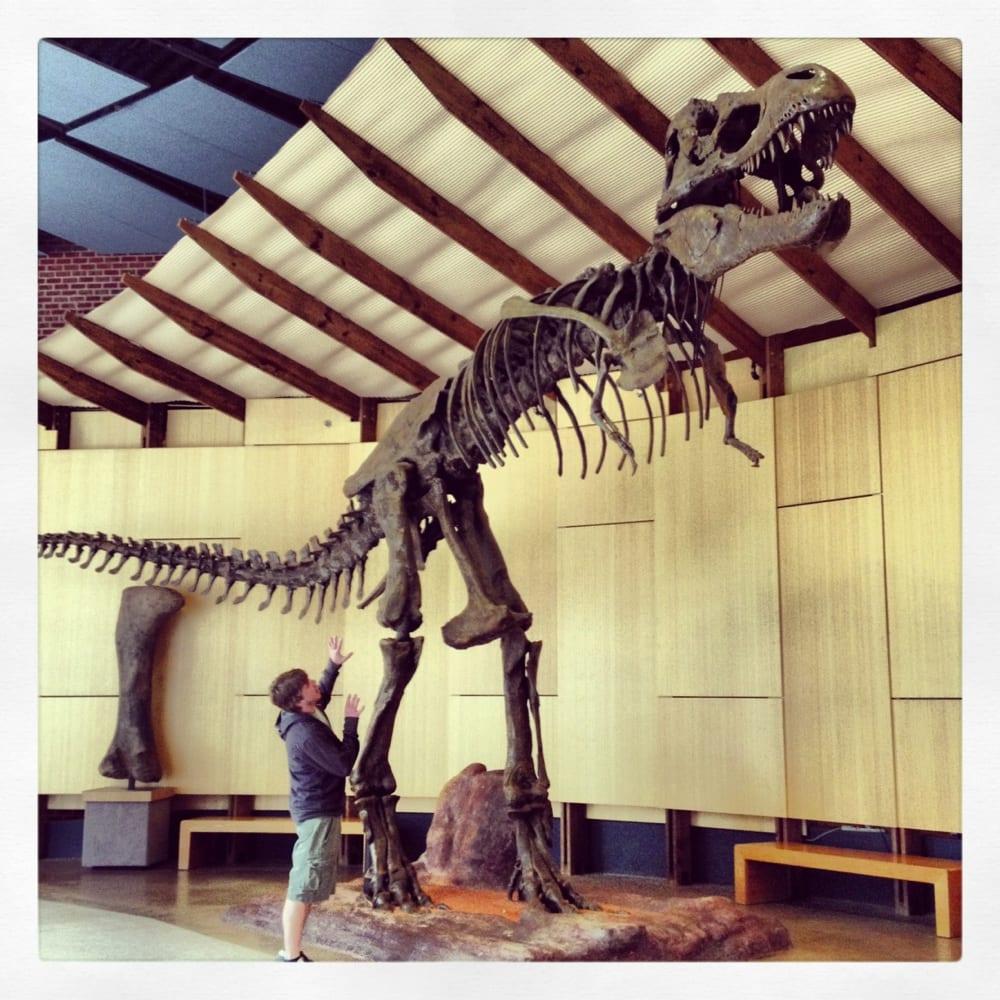 Gastonia Museum Of Natural History