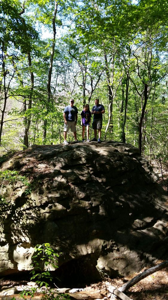 Moss Rock Preserve