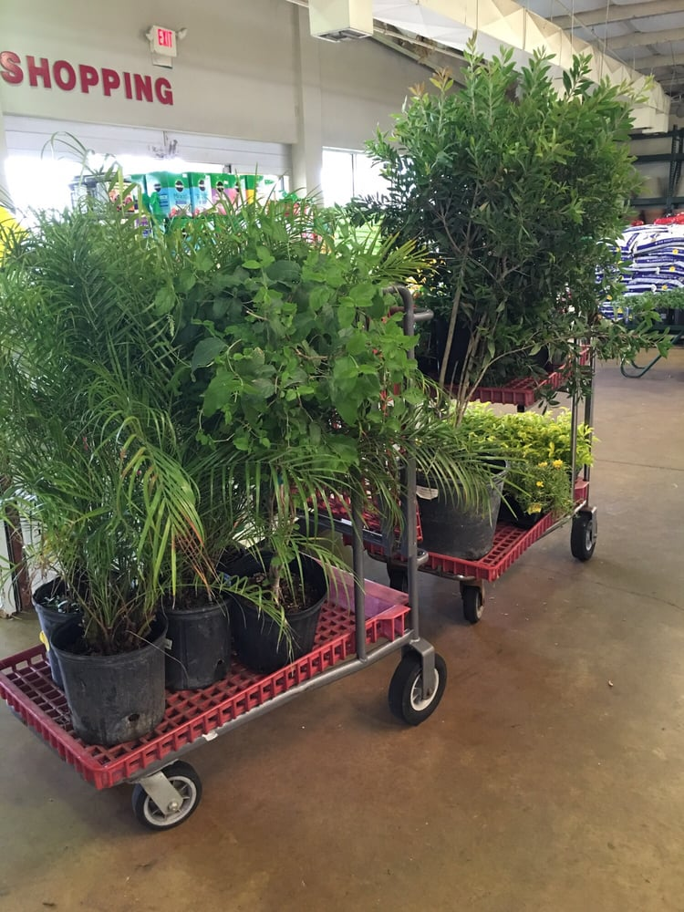Photos for houston garden centers yelp Houston garden centers houston tx
