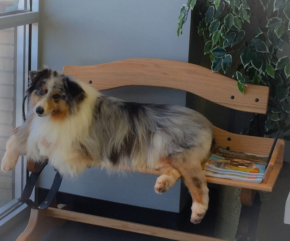 Tails-a-Wagn Pet Grooming: 1199 W Country Club Rd, Claremore, OK