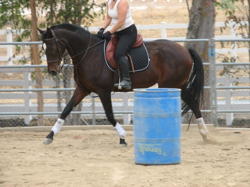 Photos for la casa julotta horse ranch yelp for Piani casa ranch california
