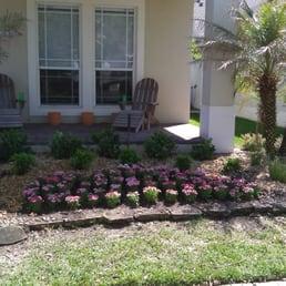 Photo Of Your Lawn Solution   Winter Garden, FL, United States. Viburnum  Suspensum
