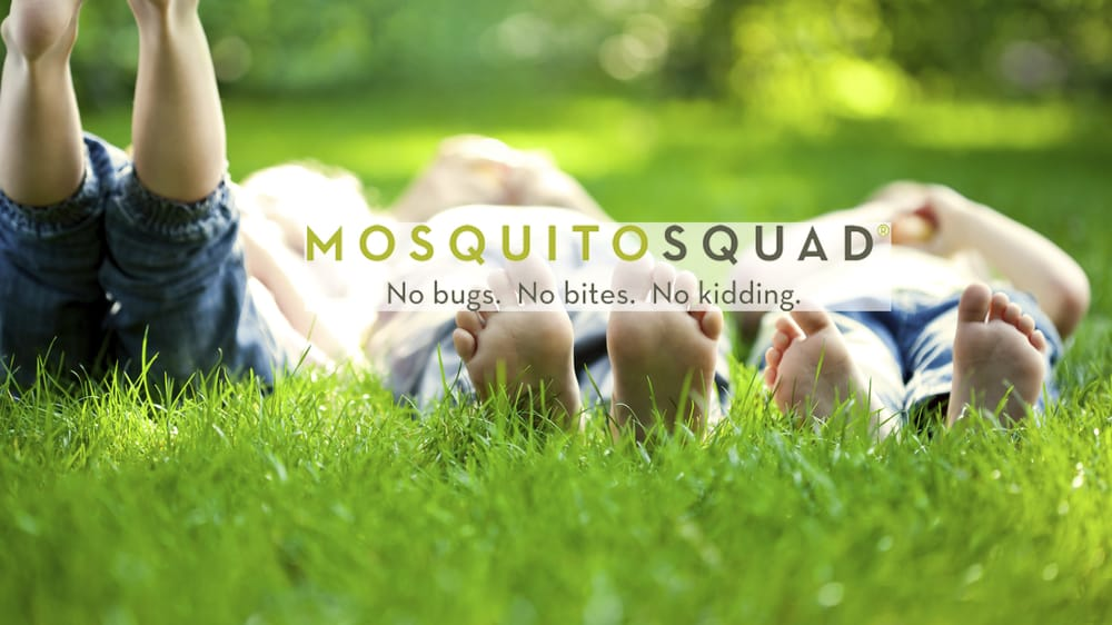 Mosquito Squad of Leominster