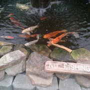 ... Photo Of Atlanta Water Gardens   Atlanta, GA, United States. They Have  The