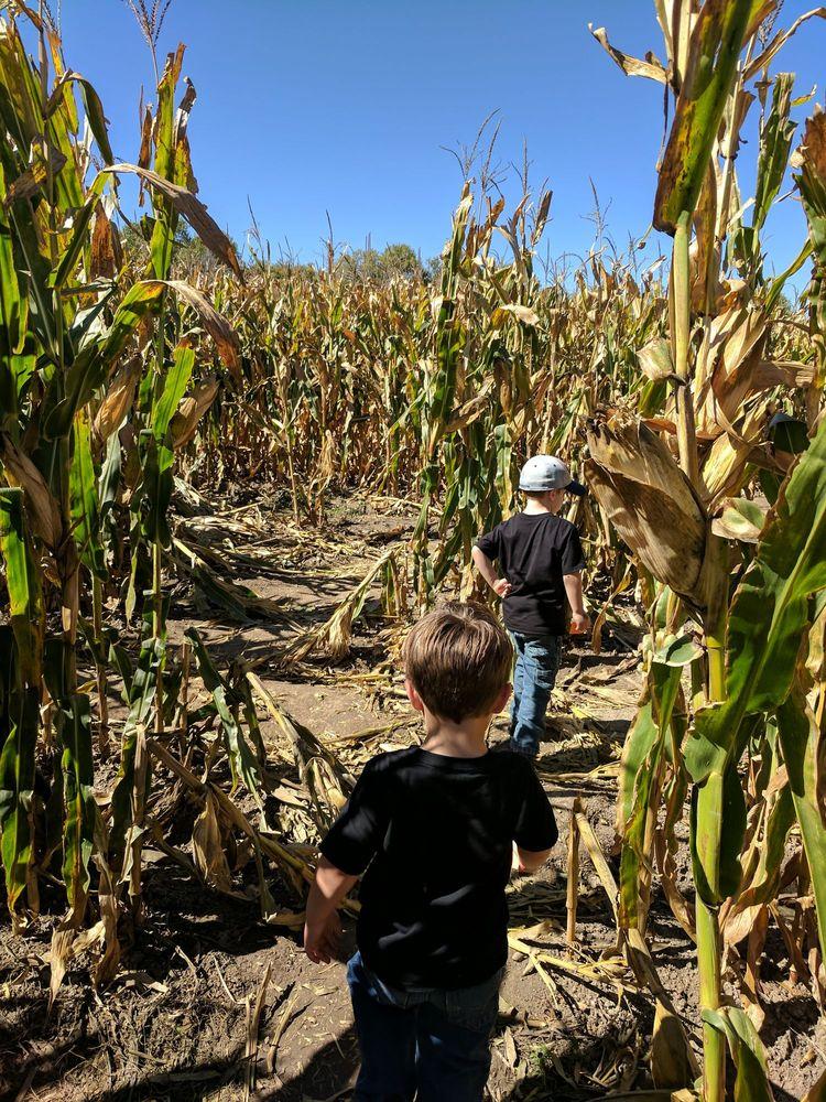Harvest Days: 32999 Daniel Rd, Pueblo, CO