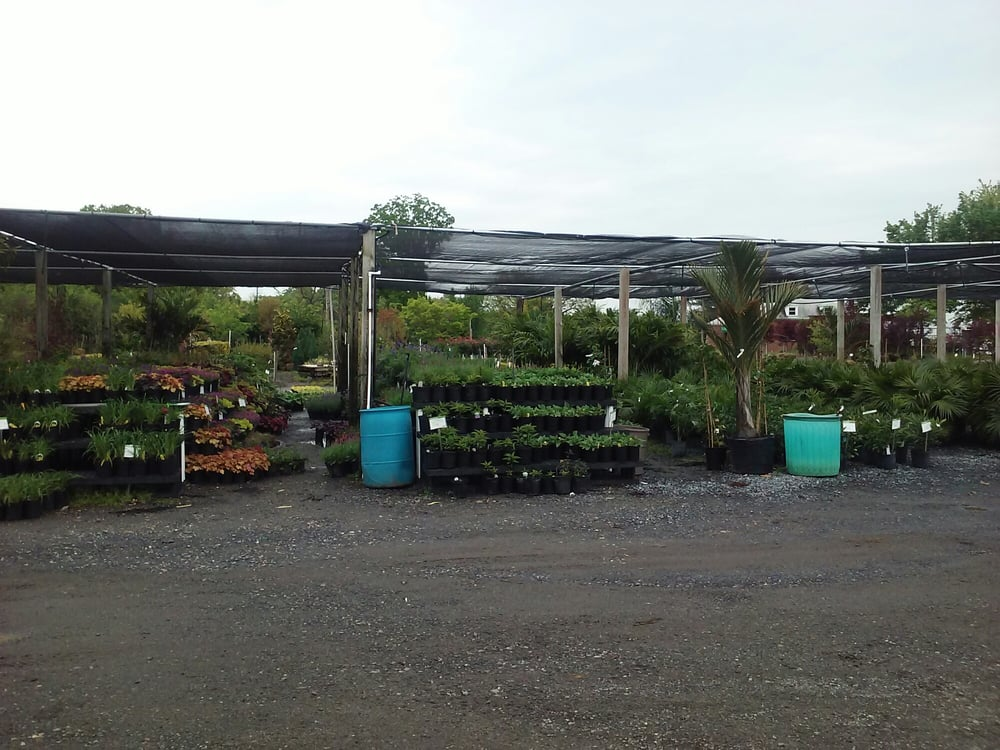 Shemin Nurseries: 4100 Sandy Spring Rd, Burtonsville, MD