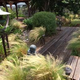 david clarke design get quote landscaping rolando san diego