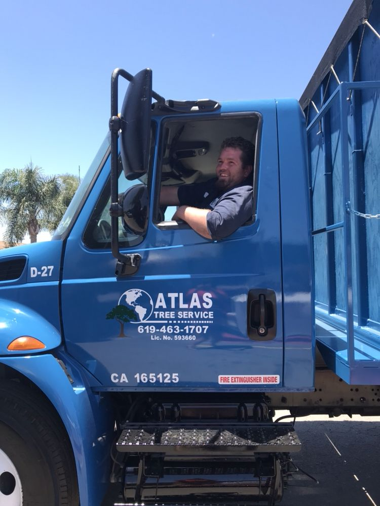 Atlas Tree Service 24 Photos 33 Reviews Services 9032 Olive Dr Spring Valley Ca Phone Number Yelp