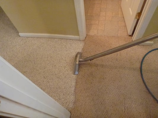True blue carpet cleaning get quote cleaner cleaning services monroe nc united states - Often clean carpets keep best state ...
