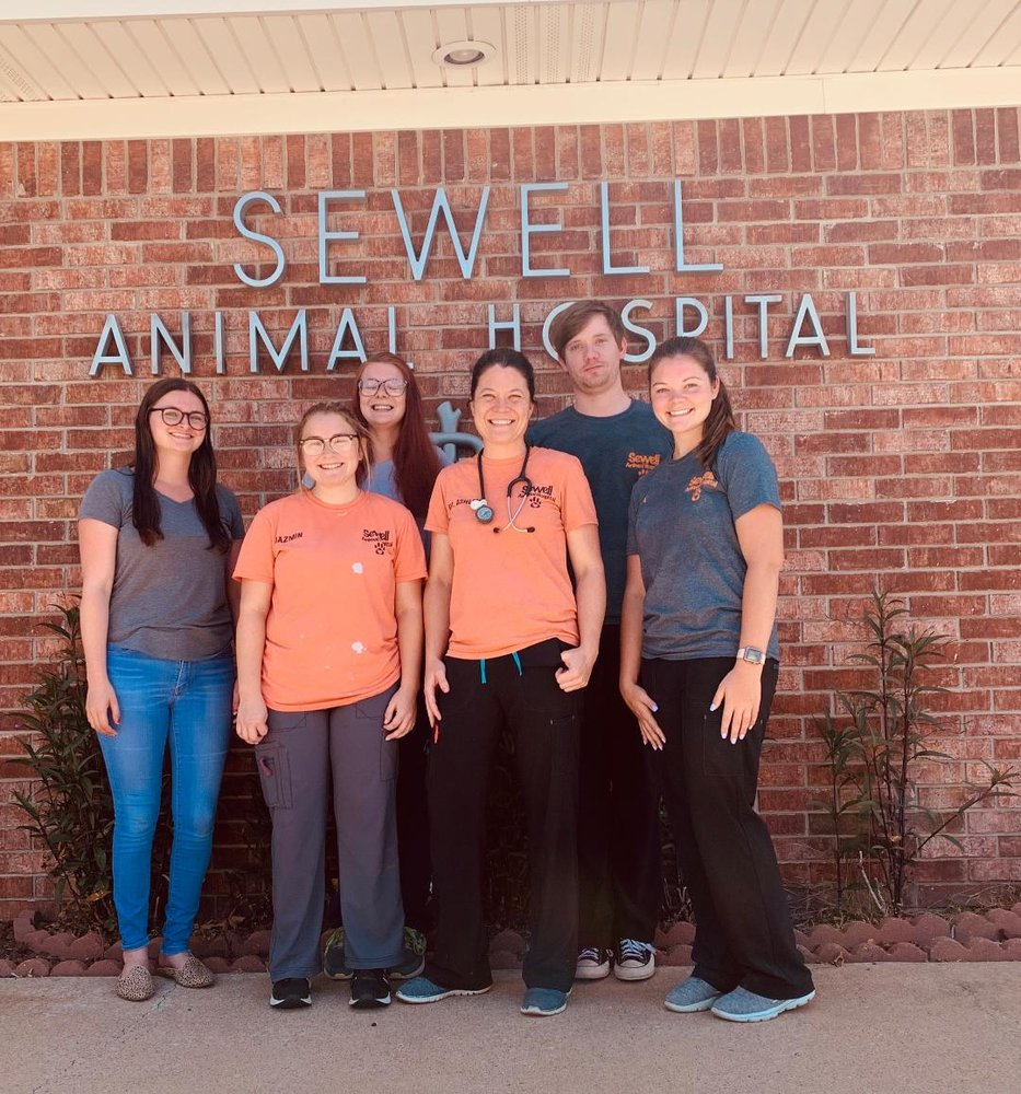 Sewell Animal Hospital: 638 S Main St, McAlester, OK