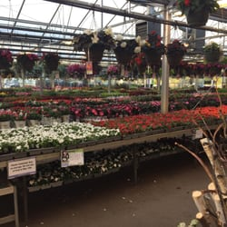 Bachmans Nurseries Gardening 2600 White Bear Ave N Saint