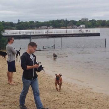 Bayview Dog Beach Pensacola Florida Dog Park Beach