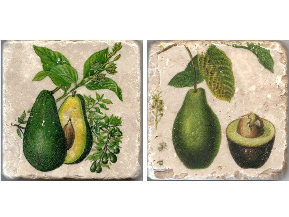 Avocado Italian Marble Coasters Yelp