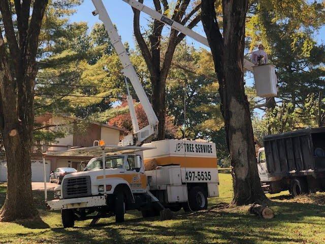JB's Tree Service: Cottontown, TN