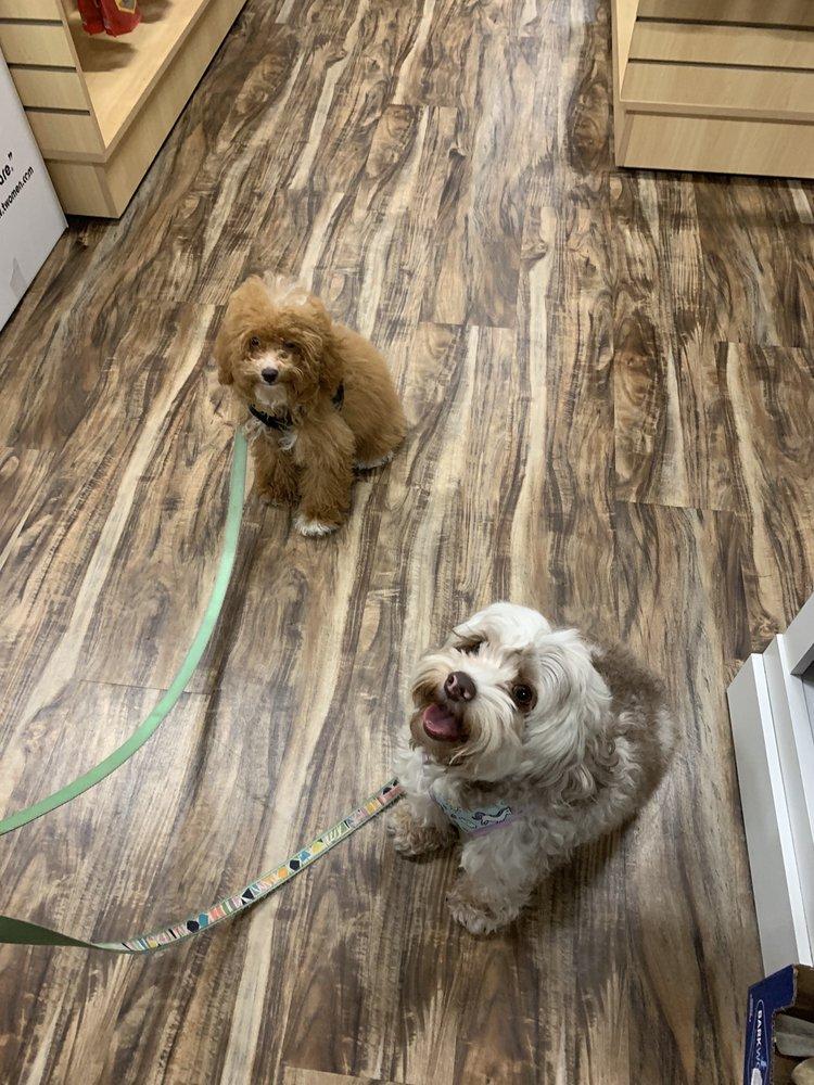 Bentley's Pet Stuff: 4165 N Oakland Ave, Shorewood, WI