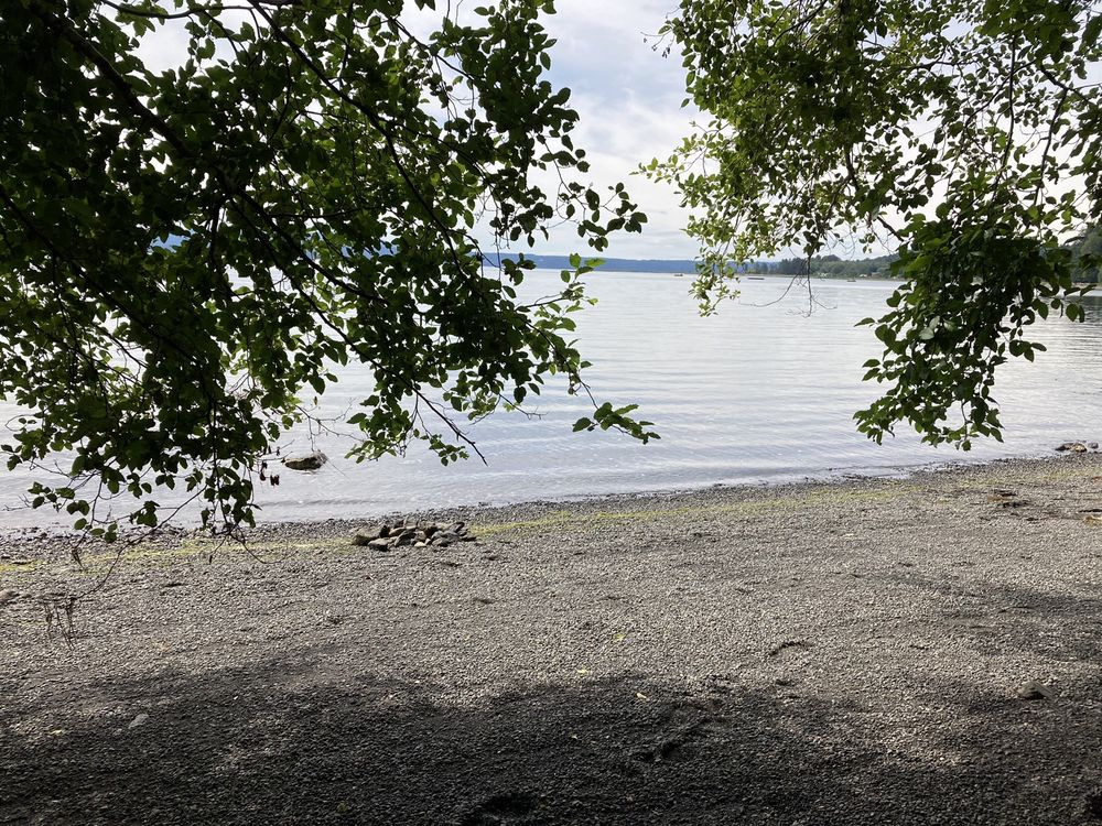 Seal Rock Campground: 295142 Highway 101 S, Quilcene, WA